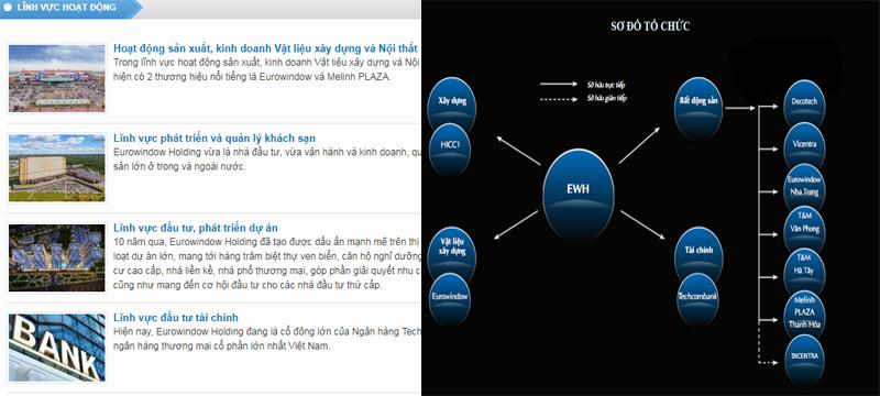 Các lĩnh vực hoạt động và sơ đồ tổ chức của Eurowindow